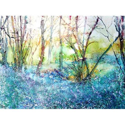 Bluebell Wood, Derbyshire